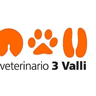 Centro Veterinario 3 Valli Sagl
