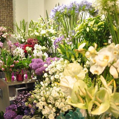 Aubert Fleurs