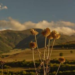 Région Syunik, Arménie