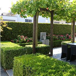 Öffentliche Garten