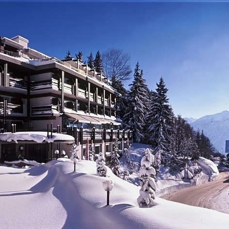 Hôtel de la Fôret - hiver
