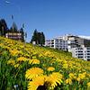 Spital Davos im Frühling