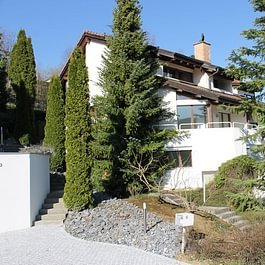 Meister Immobilien-Treuhand