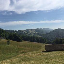 Zur Alp