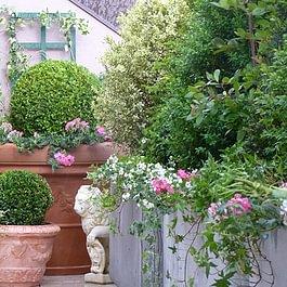 Oh ! Quel beau jardin