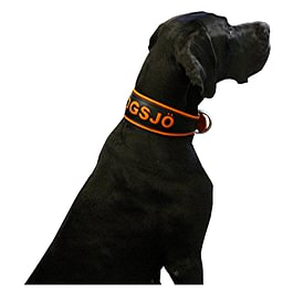 Hundehalsband