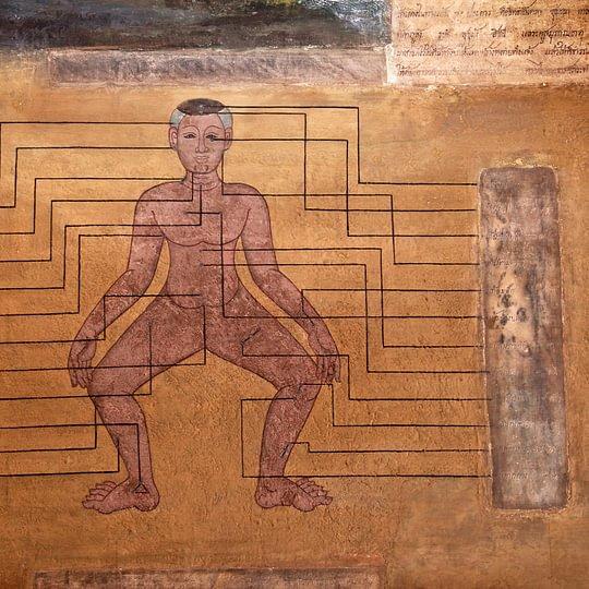 Lignes de Massage