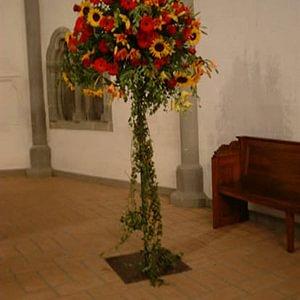 St-François-Fleurs