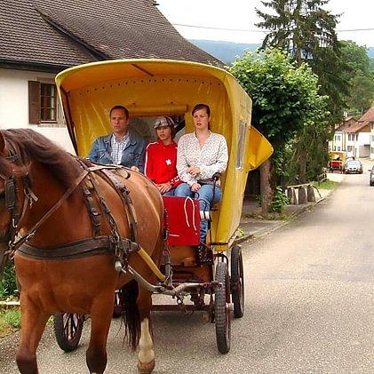 Tourisme Equestre Courtedoux Sàrl