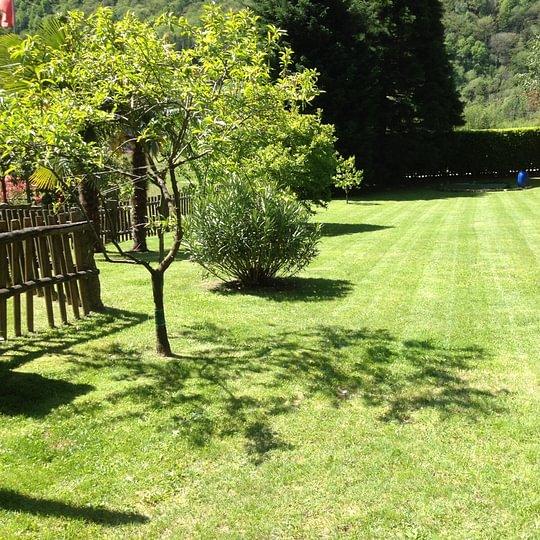 Manutenzione tappeti verdi, potatura Biasca Blenio
