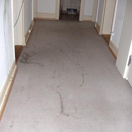 Vorher 1 Teppich