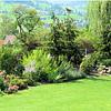 Ein Garten soll blühen