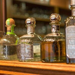 Eine riesige Auswahl an Tequilas