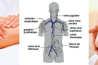 Drainage lymphatique manuel Dr Vodder