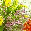 Praxis Blumendekoration
