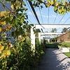 Gepflegte Gartenanlage mit schönem Laubengang