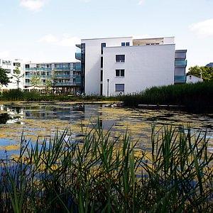 Mitteldorfpark mit Teich