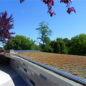 Solare Warmwasseraufbereitung Gartenbad Bottmingen