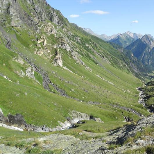 Formaggio dell'Alpe