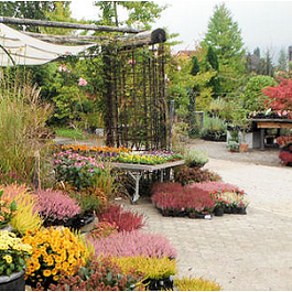 Pflanzencenter Mauren
