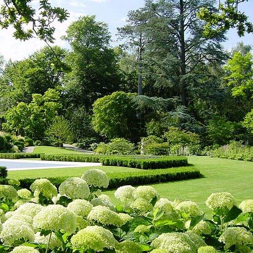 Entretien de jardin / Création de jardin