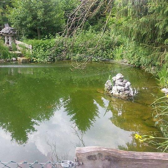 Gasthof zum Bad - Oberwil b. Büren