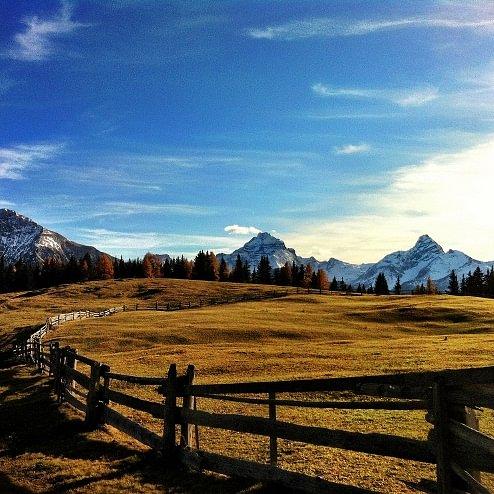 Wiesner Alp