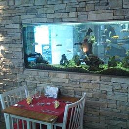 Kalkan's Restaurant & Lounge