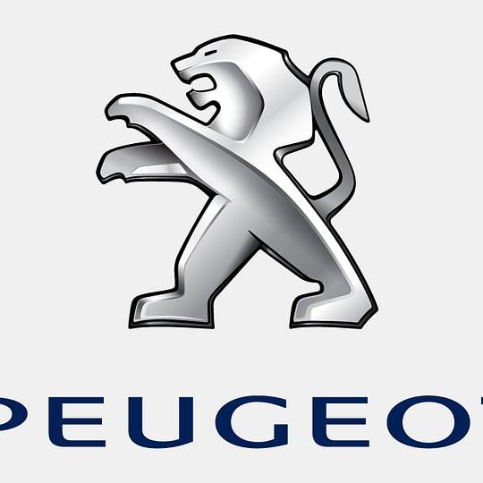Peugeot Vertretung