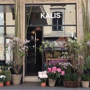 KALIS Sàrl