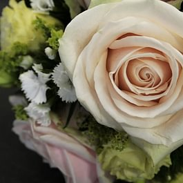 Blumen mit Stil GmbH