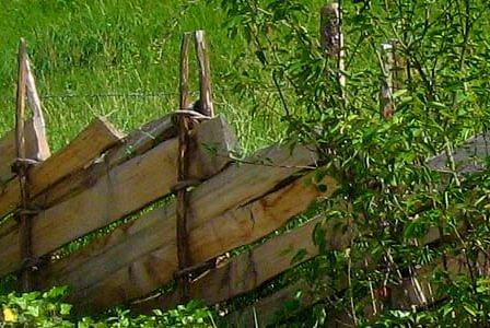 Ringzäune der Blickfang für Ihren Garten