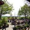 Aquilegia Im Garten Zuhause GmbH