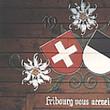 Holzfassadenrenovation komplatt