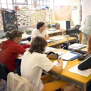 Sekundarschule und Gymnasium
