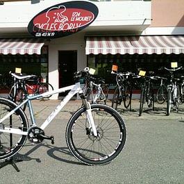 Cycles Borly