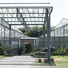 Herrmann Pflanzen GmbH