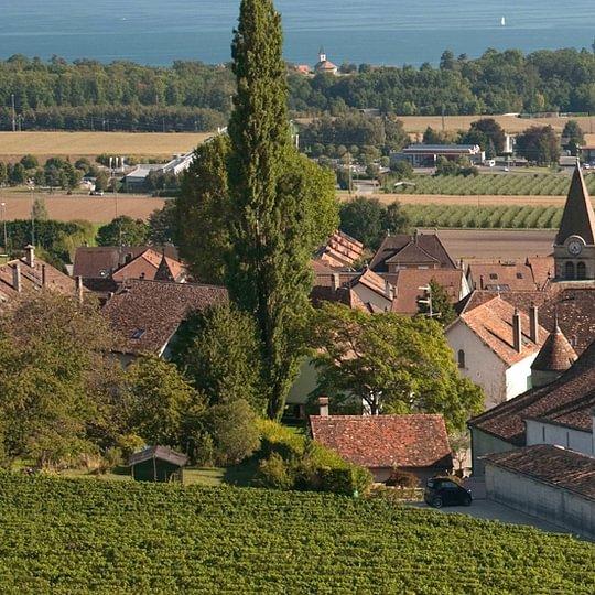 Château le Rosey
