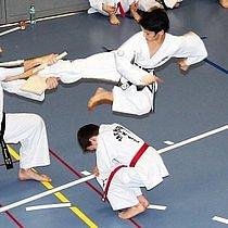 Ecole de Taekwon-Do Fribourg