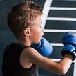 A1 Boxing Gym