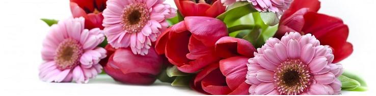 Senn Blumen AG