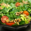 Salat im Seefeld