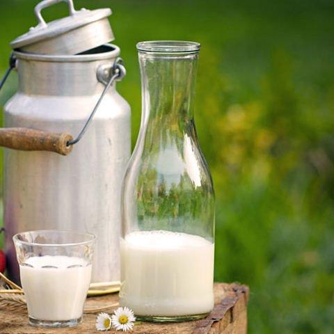 Bio Milch - Der perfekte Start in den Tag!