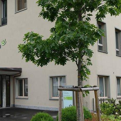 Bethesda Spital Basel