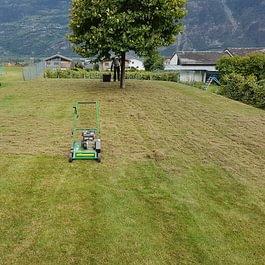 Scarification de pelouse