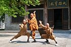 Shaolin Ch'an Tempel