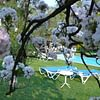 Villa Siesta Park Losone bei Ascona