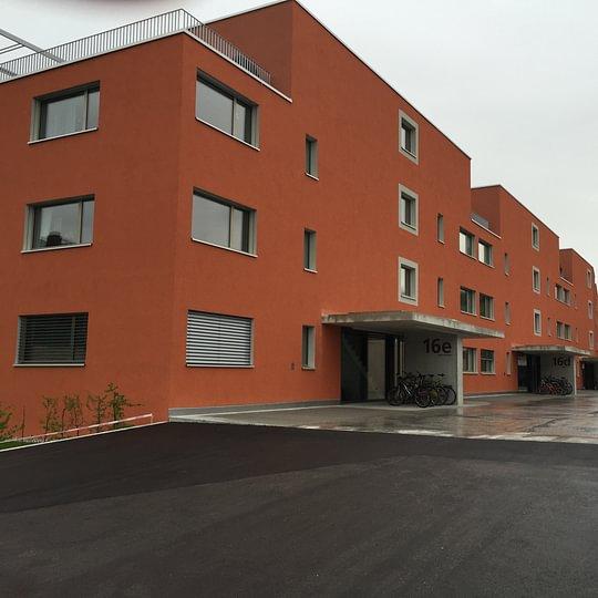 Gipser & Maler Kimi GmbH