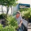 Pflanzen direkt auf die Baustelle