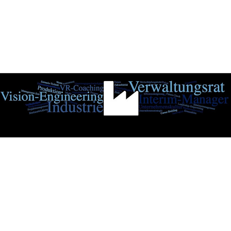 Interim Management, Verwaltungsrat, Strategieentwicklung